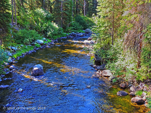 camping mountains idaho rivers wonderworld payetteriver middleforkpayetteriver