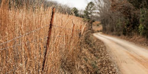 road fence landscape arkansas whitecounty