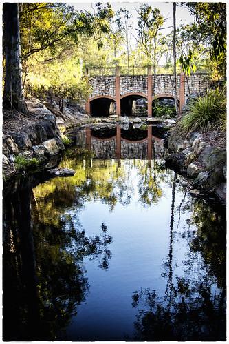 bridge trees water waterreflections forestlake