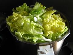 白菜1玉分
