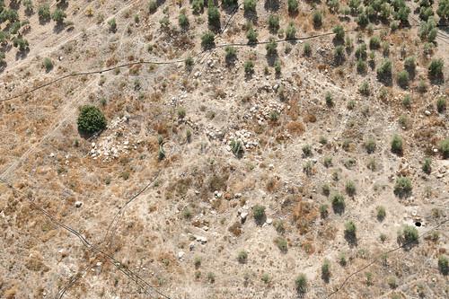 Amman Village? 1