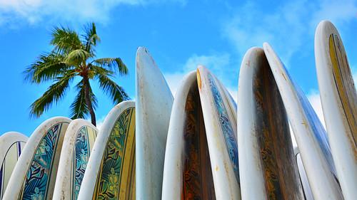 blue vacation sky cloud tree beach hawaii surf view angle waikiki oahu board palm hi honolulu edmund garman d7000