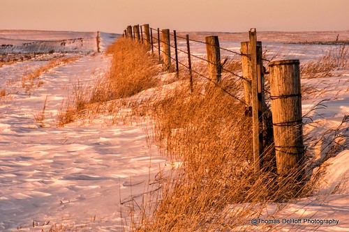 light snow fence golden sony iowa a580