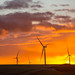Sunset with turbines