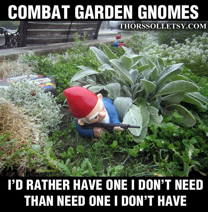 Combat Gnome Meme3