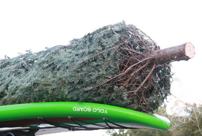 simply seleta wreath5