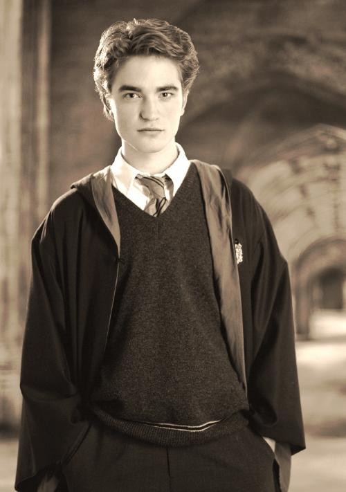 P4_Cedric_Diggory