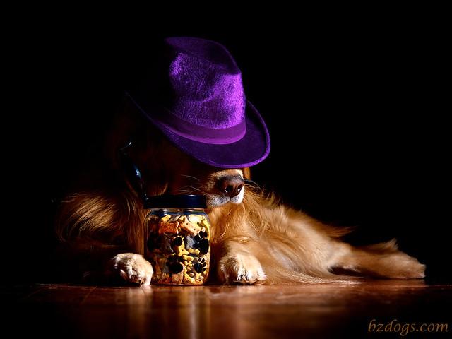 Inspector Henry