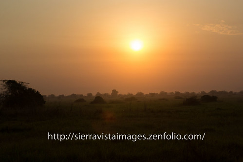 sunrise brush juba ssudan