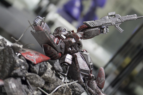 GBWC2014_World_representative_exhibitions-216