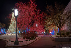 Temple Square Lights #4