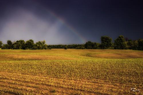 sonyslta77v zara rzara russzara russ field farmers rainbow landscape nature outdoor outside londonontario canada byron storm trees