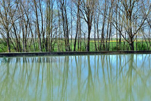 Reflections, Geometry, Polarizer, Frist sluice, Campos branch, The Canal of Castile, Abarca de Campos, Palencia, Spain
