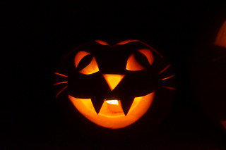 Amy's Cat Pumpkin