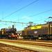 NS locomotieven / Apeldoorn by Bevadi