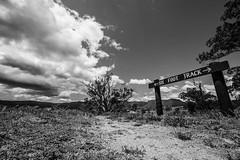 Six Foot Track -  signage