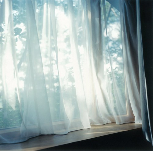 "Rinko-Kawauchi, Untitled (I-126), from the series ""Illuminance"", 2011"