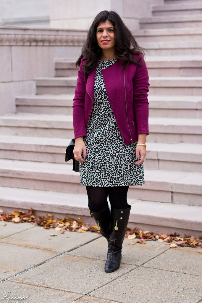 leopard dress, purple moto jacket, black boots-2.jpg