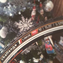 Maybe Santa will find some mud in these days... #challenge #limus #cx #cyclocross #lafangazza
