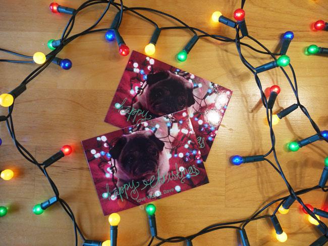 pug-christmas-cards
