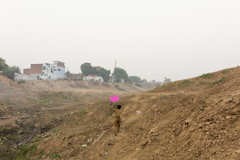 Pink kite, Allahabad