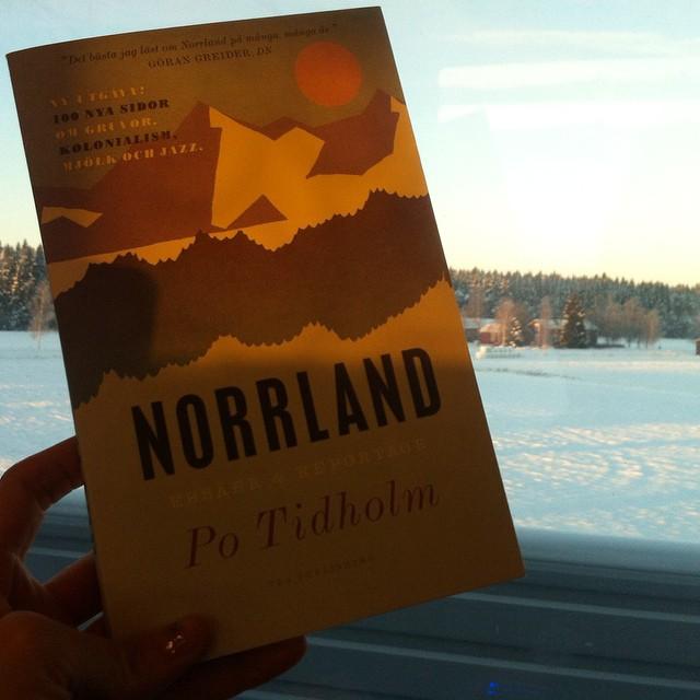 På Norrtåget med Norrland, någonstans i Norrland.