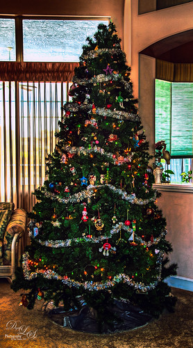 Image of a Christmas Tree