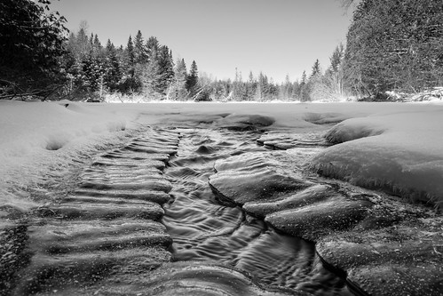winter blackandwhite bw snow ontario ice monochrome landscape mono nikon perspective warsaw peterborough warsawcaves lowangle conservationarea indianriver d7100