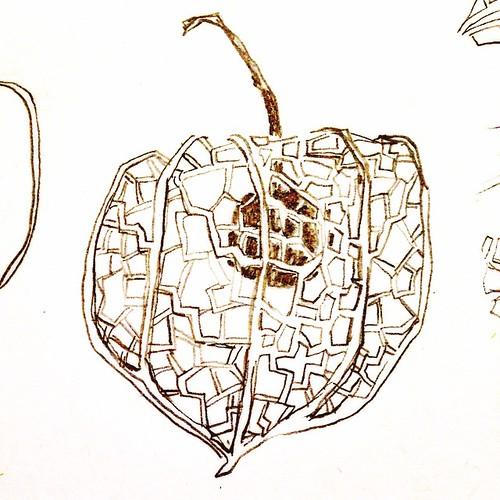 A skeleton paper Japanese lantern #abspdm1