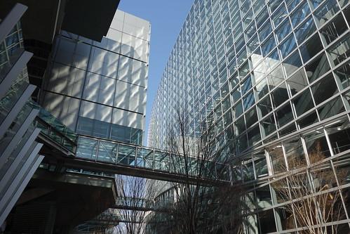 """Tokyo_22 東京都丸の内の """"東京国際フォーラム"""" の写真。 ガラス張りの壁面と空中通路と落葉した樹木が画像に写っている。 ガラス面からの反射光が向かい側の建物の壁を鱗状に照らしている。"""