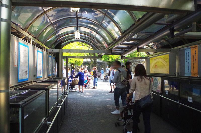 toomilog-edogawaku_zoo017