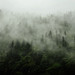India : Himalaya by galibert olivier