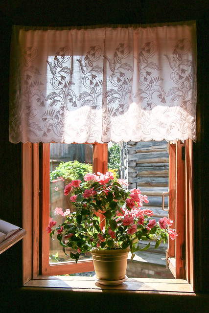 Window and flowers in a old house, museum of wooden masterpieces, Suzdal スズダリ、木造建築博物館の古民家の窓辺