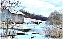 Barns & Sheds