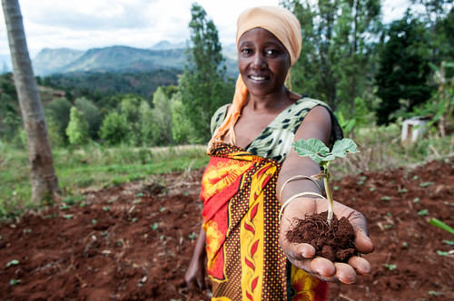 Sharifa Juma digs terraces to stop soil erosion