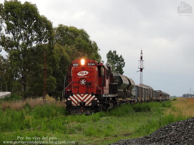 ALCO RSD16 8500