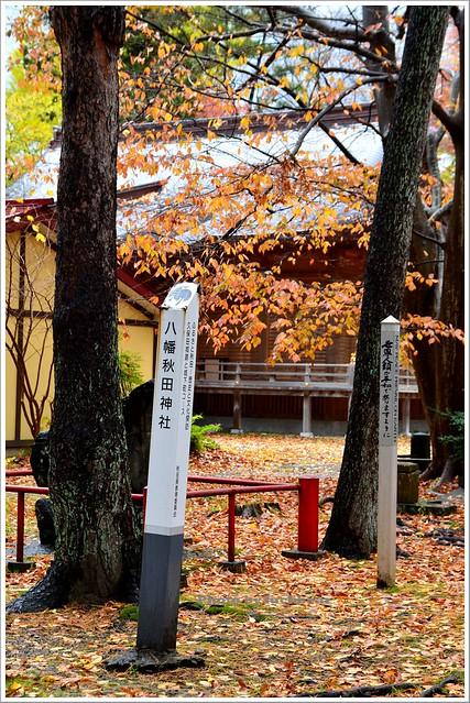 秋田千秋公園022-DSC_3604