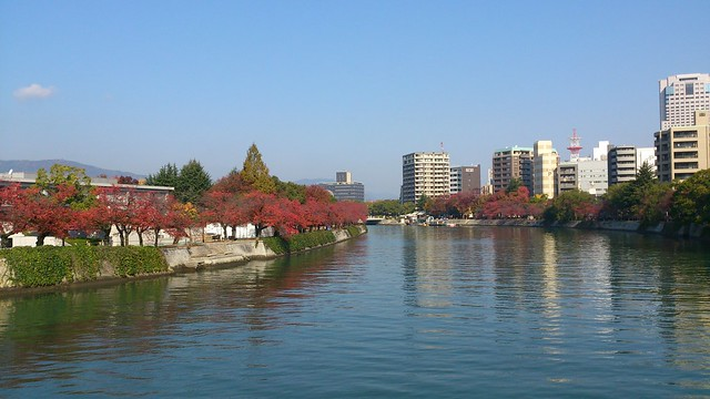 colored leaves in Hiroshima 広島市内の紅葉