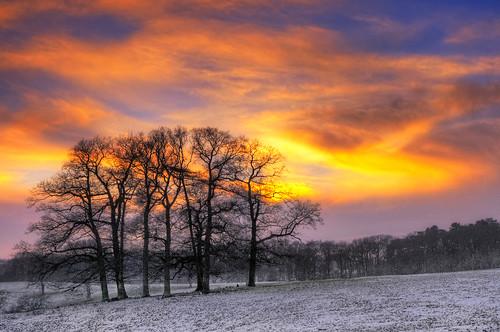 christmas winter sunset england sky clouds leicestershire unitedkingdom gumley