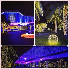 #Christmas #ChristmasLights #NighLights #RitzCarlton #Seef #myBahrain #ILoveBahrain #BahrainatNight #Bahrain