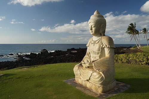 golf hawaii lava buddha hilton waikoloa thehilton waikoloabeach turtleslava2014
