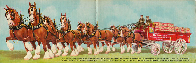 bud-clydesdale-postcards