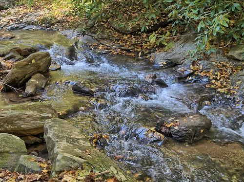 water landscape pearsonsfalls