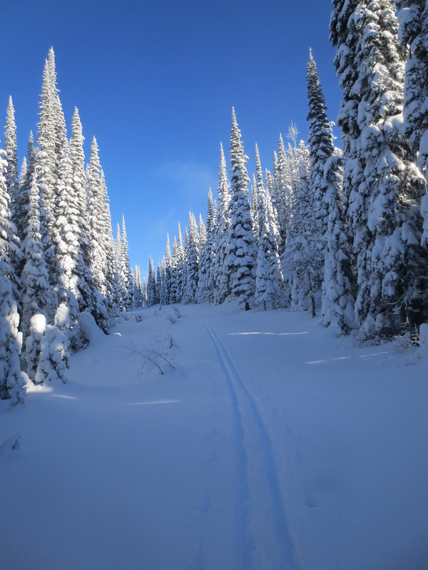 First tracks on last day of 2014