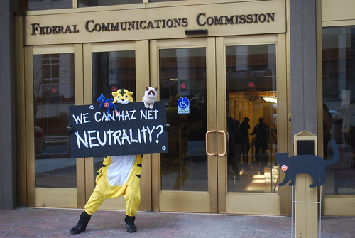 Internet cats unite for Net Neutrality