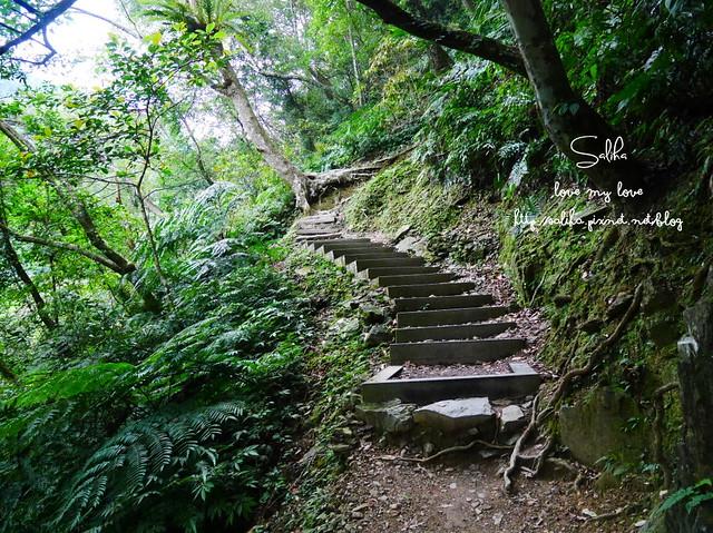 烏來景點內洞森林遊樂區 (23)