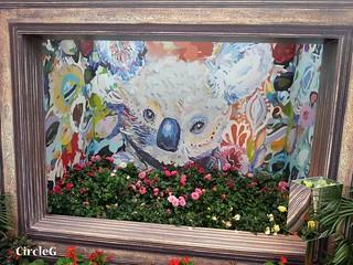 CIRCLEG 遊記 維多利亞公園 銅鑼灣 花展 2016 (20)
