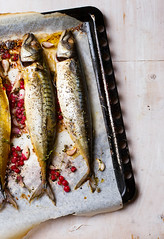 mackerel - a grill with red currant
