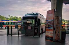 Putrajaya Tour Bus