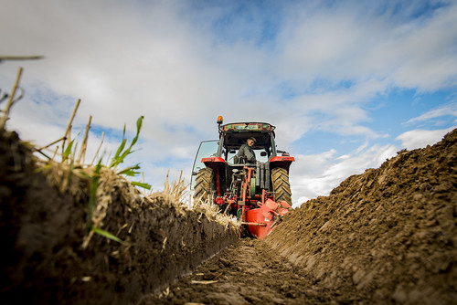 North West Kildare Ploughing Association 2 2016-10-16 015
